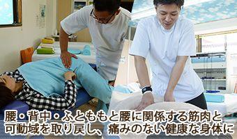 腰、背中、ふとももの筋肉靭帯を調整